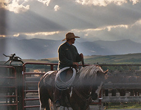 Cowboy with mountains in background