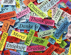 Words in many languages